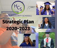 strategic plan release